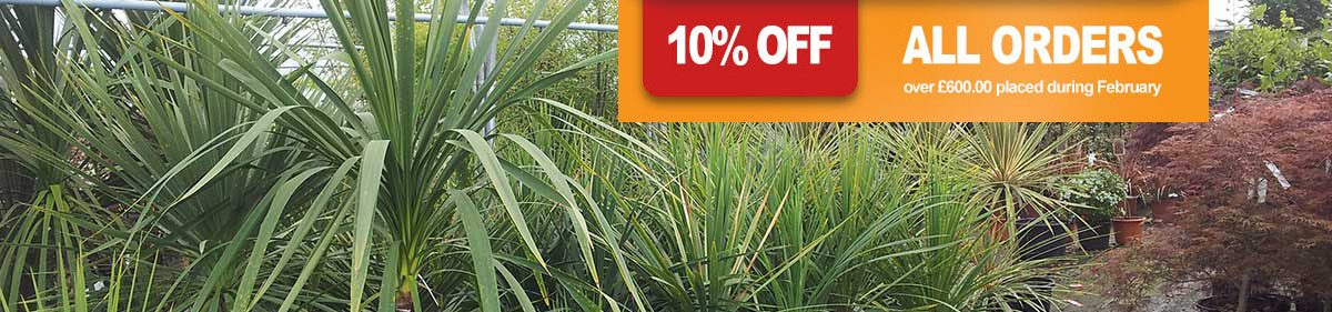Get 10% off orders over £600 in February 2017 at Rainbow Plants